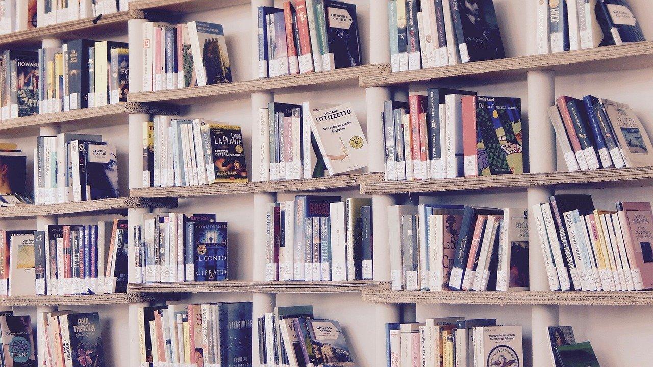 livros para CEO